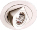Halogen Adjustable Downlight